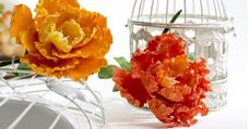 Picture for category Flower Making Products