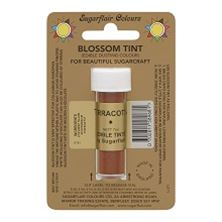 Picture of SUGARFLAIR EDIBLE TERRACOTTA BLOSSOM TINT DUST 7ML
