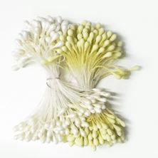 Picture of PISTILS/STAMENS  X 288 WHITE AND YELLOW PRICE PER BUNCH