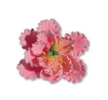 Picture of PINK SUGAR PEONY 11CM
